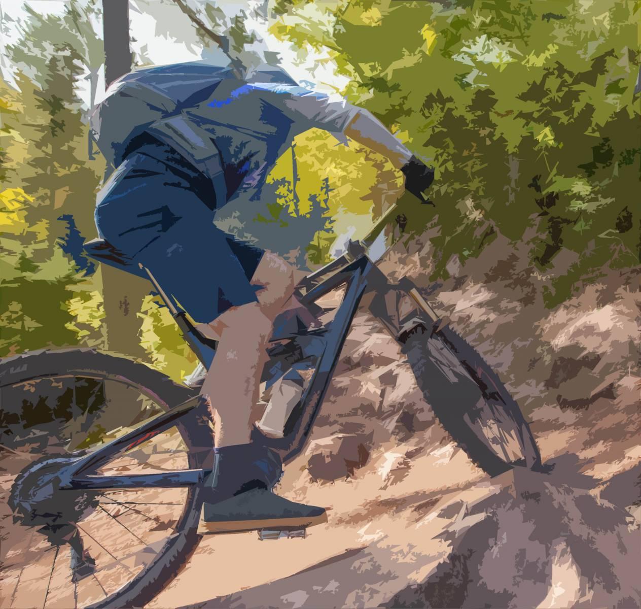 graphic image of mountain biker