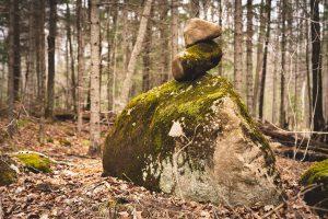 Moss-covered rock kern